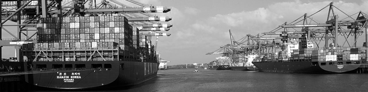 ZWECKNETZ :: Consulting für E-Commerce & Digital Marketing Hamburg